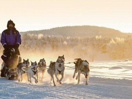 Zimné aktivity v severských krajinách.